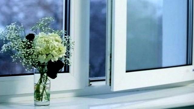 Окна металлопластиковые WDS